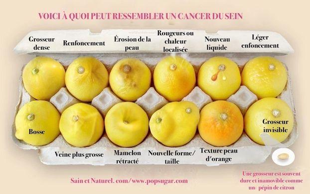 https---www.sain-et-naturel.com-wp-content-uploads-2017-07-d%C3%A9pister-le-cancer-du-sein.jpg